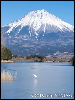 凍結した田貫湖と富士山
