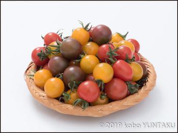 鹿沼産の色とりどりのミニトマト