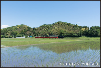 小湊鐵道里山トロッコ列車