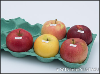 太田農園のりんご
