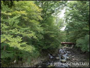 修善寺温泉/修善寺川(桂川)